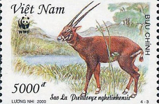 Tem bưu chính giới thiệu về loài Sao la của Việt Nam.