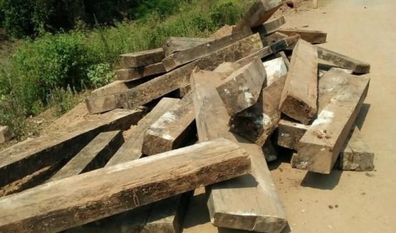 Vụ phá rừng gỗ mun trong Vườn Di sản Phong Nha: 'Lật tẩy bí mật' của 2 hộ dân