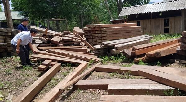 Số gỗ lậu thu giữ đã được đưa về cơ quan kiểm lâm. Ảnh: T.N.Phong