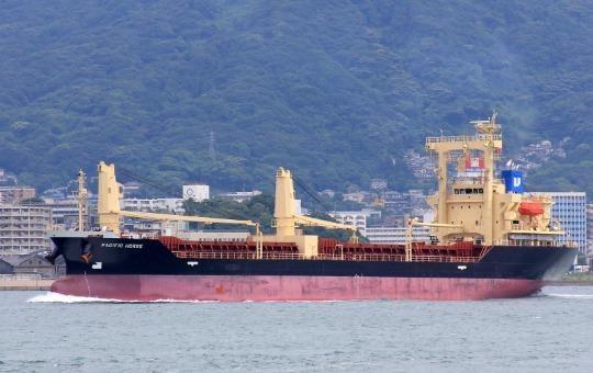 Tàu Pacific Horse khi đang neo đậu trên biển Nhật Bản.