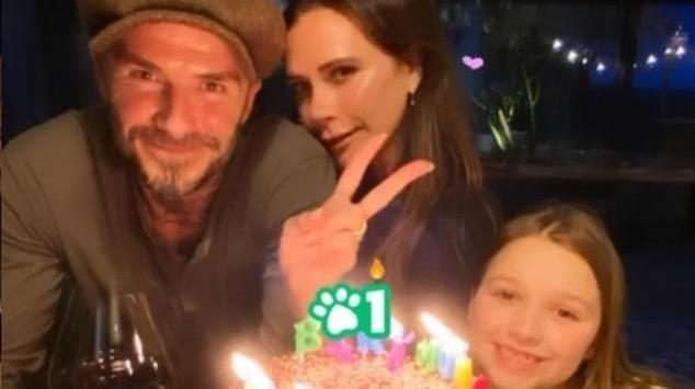 Vic cùng chồng và con gái Harper. Ảnh: Dailymail