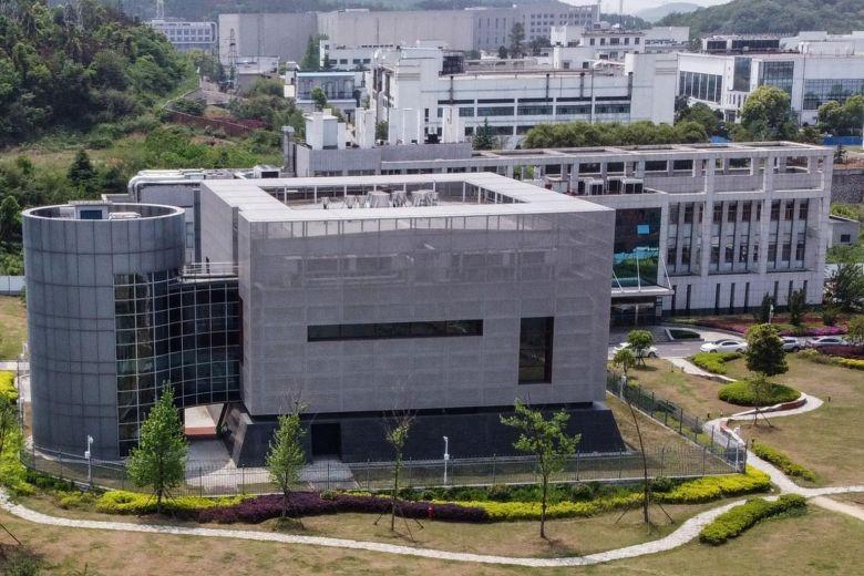 Giám đốc phòng thí nghiệm Vũ Hán phủ nhận liên quan về nguồn gốc của virus corona