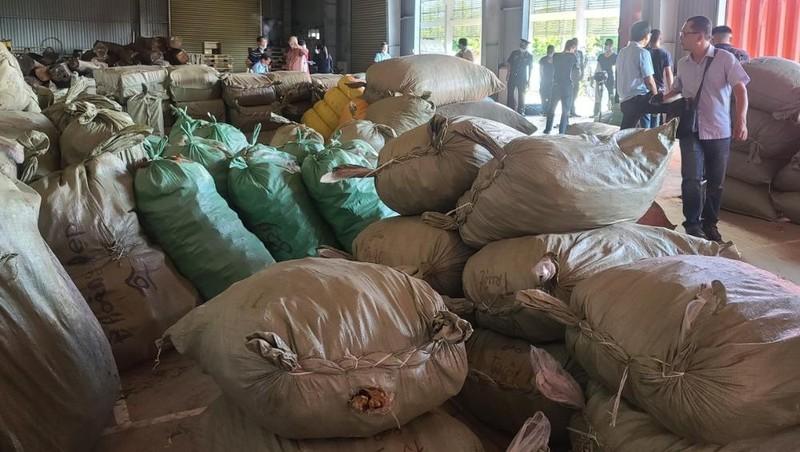 """Bắt 100 tấn dược liệu """"đội lốt"""" hàng nông sản nhập về qua Cảng Đà Nẵng"""