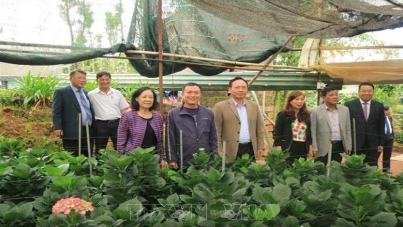 Trưởng Ban Dân vận Trung ương Trương Thị Mai cùng các đại biểu thăm mô hình sản xuất hoa công nghệ cao tại thôn Đa Quý, xã Xuân Thọ, TP Đà Lạt - Ảnh: TTXVN