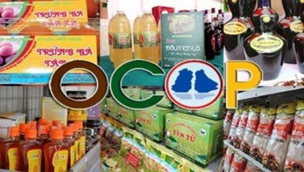Nhiều sản phẩm, hàng hoá của các HTX được trưng bày tại Triển lãm đều đạt các tiêu chuẩn VietGap, GlobalGap, OCOP...