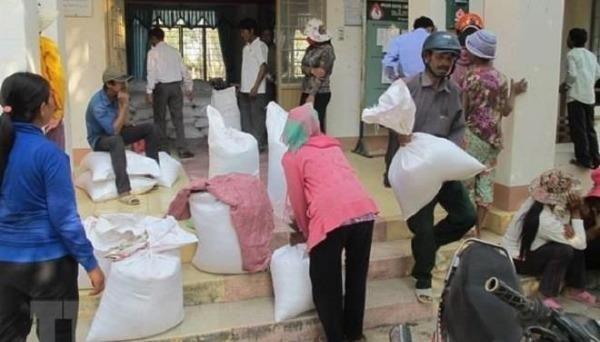 Quảng Bình, Quảng Ngãi được Chính phủ hỗ trợ hơn 3.500 tấn gạo. Ảnh: TTXVN