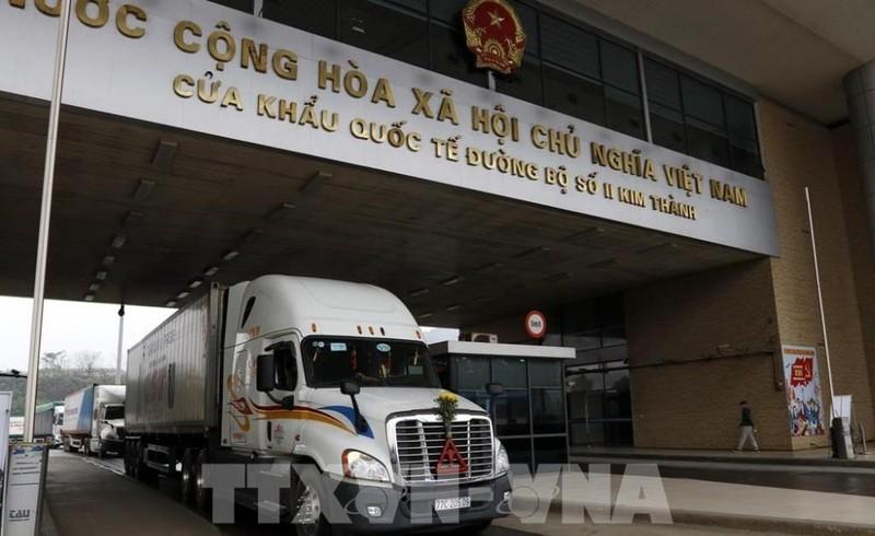 Hơn 14.000 tấn thanh long đã được xuất khẩu sang Trung Quốc