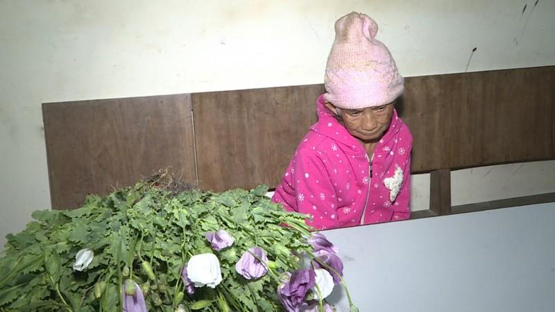 Bà Lầu Thị Mỷ cùng tang vật bị thu giữ.