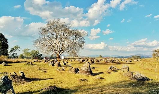 Bí ẩn cánh đồng chum ma quái ở Lào