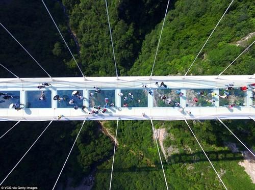 Cận cảnh cầu thủy tinh cao và dài nhất thế giới vừa khai trương - ảnh 6