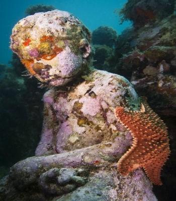 Video về bảo tàng điêu khắc dưới đáy biển MUSA