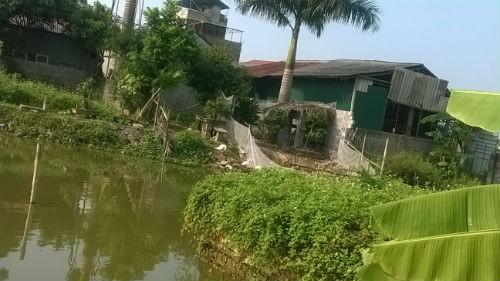 Ứng Hòa, Hà Nội: Chưa xử lý dứt điểm tình trạng lấn chiếm đất nông nghiệp