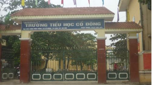 Trường Tiểu học Cổ Đông thị xã Sơn Tây, nơi Hiệu trưởng đang bị tố cáo nhiều sai phạm