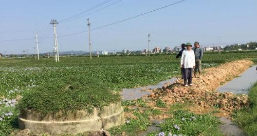 Việt Yên (Bắc Giang): Người dân bức xúc vì dồn điền, đổi thửa