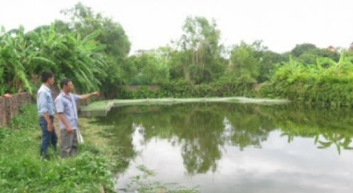 """Thái Bình: Đất sử dụng hơn 30 năm  bỗng trở thành """"đất công"""""""