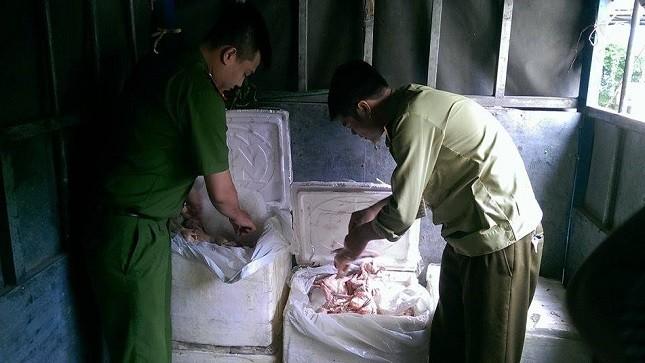 Phát hiện 2,5 tạ chim đông lạnh nhập lậu vào Hà Nội tiêu thụ