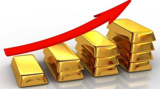 Giá vàng tăng cao nhất trong nửa tháng