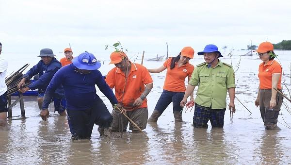 Khu vực trồng 2.000 cây bần nằm ở cửa biển thuộc sông Hậu, là một trong những khu vực chịu thiệt hại nặng nề của triều cường.