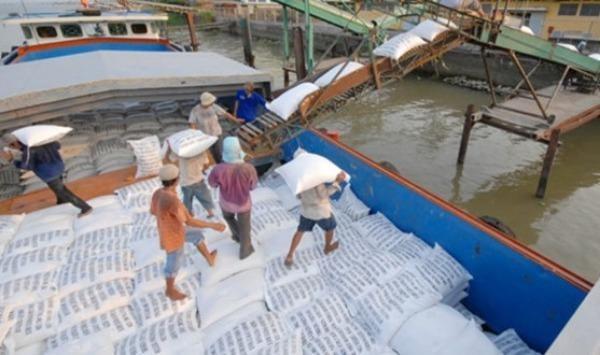 Đánh giá hoạt động xuất nhập khẩu gạo ở khu vực phía Nam