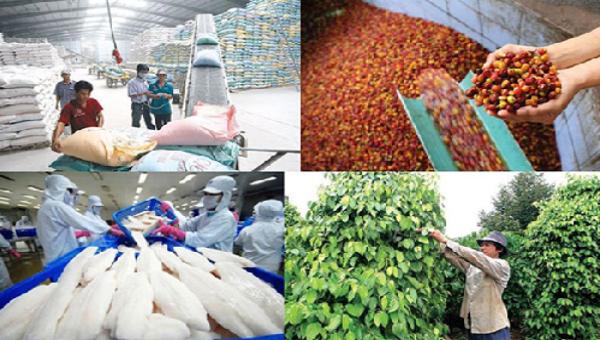 Lưu ý doanh nghiệp xuất khẩu EU về chứng thư điện tử kiểm dịch động, thực vật