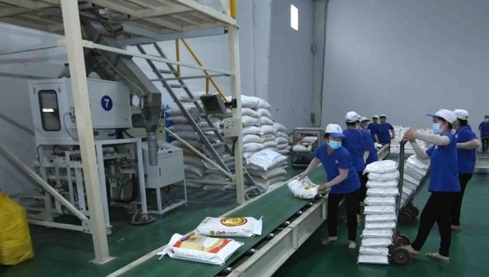 Từ hôm nay, hoạt động xuất khẩu gạo trở lại bình thường