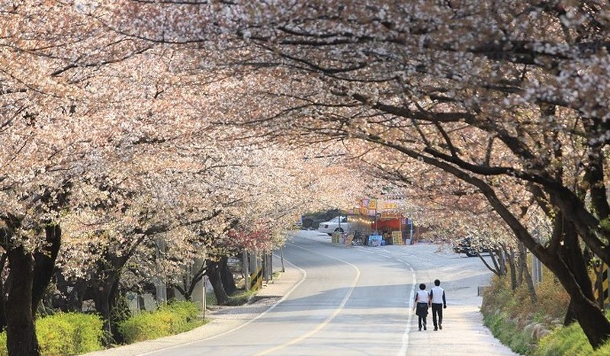 """Tổng cục Du lịch Hàn Quốc công bố cuộc thi """"Relive Your Korea Trip"""""""
