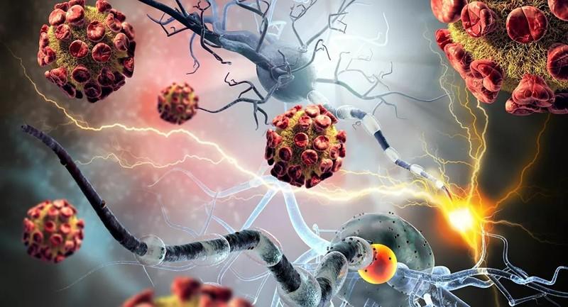 """Hy vọng mới cho bệnh nhân ung thư: """"Cứu tinh"""" từ hạt nano?"""