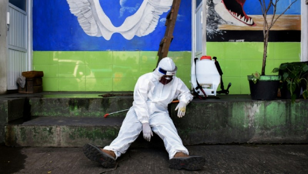 Cảnh báo đáng ngại của WHO trong bức tranh thế giới nhiều gam màu