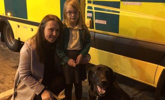 Chú chó giúp bé gái gọi cấp cứu cho mẹ