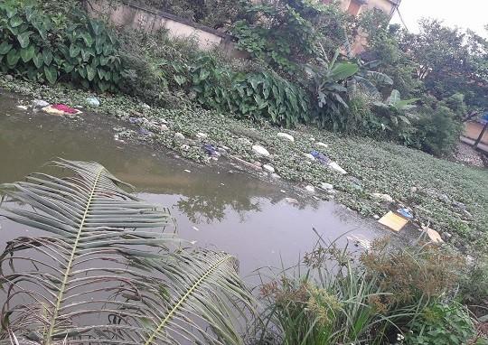 Nguồn nước bị nhiễm bẩn từ rác thải sinh hoạt