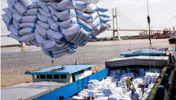 """Ủy ban Kinh tế đề nghị làm rõ có dấu hiệu tiêu cực trong """"dùng dằng"""" xuất khẩu gạo hay không?"""