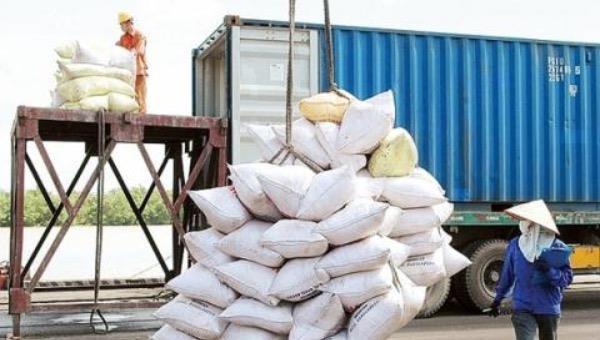 Chỉ đạo mới nhất của Phó Thủ tướng về xuất khẩu gạo