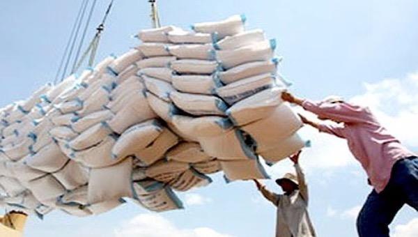 Chính thức thanh tra quản lý nhà nước về xuất khẩu gạo