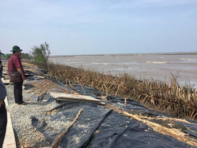 UBND tỉnh Cà Mau đã quyết định giao cho Busadco thực hiện dự án làm kè chắn sóng bảo vệ bờ biển Tây và Đông Cà Mau