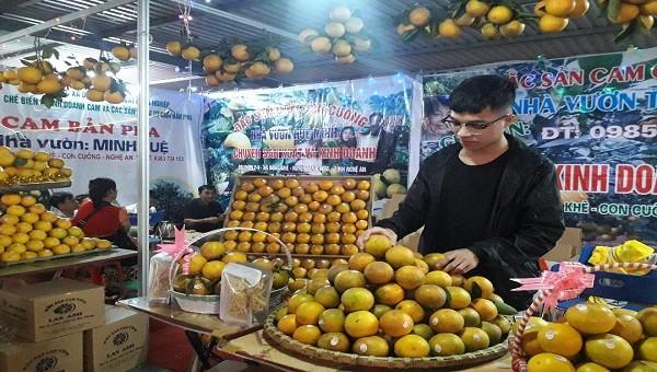 Cam Vinh đặc sản 100.000 đồng/quả xuất hiện ở Hà Nội