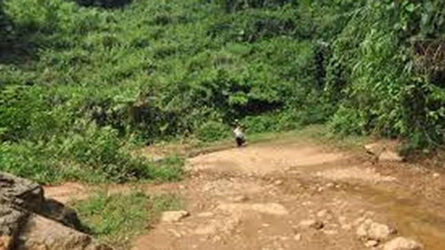 Bắc Giang: Phát hiện nam thanh niên uống thuốc sâu tự tử