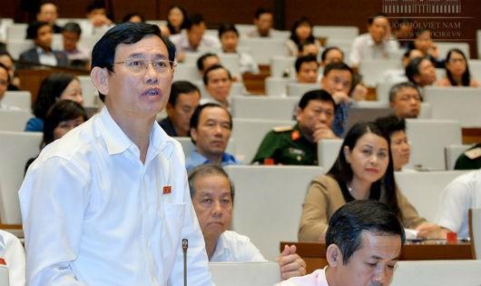 ĐB Nguyễn Ngọc Phương.