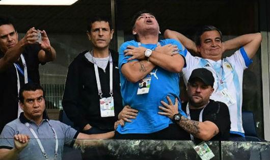 Maradona phấn khích trên khán đài.