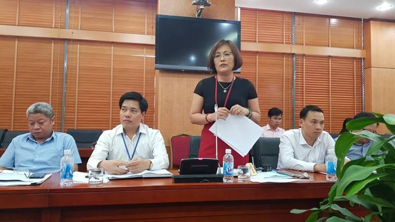 Bà Đào Hồng Minh thông tin tại cuộc họp.