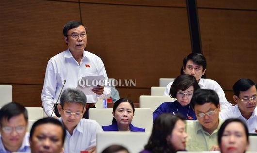 ĐB Nguyễn Bá Sơn phát biểu tại phiên họp.