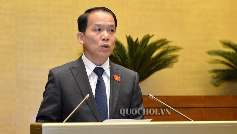 Phó Tổng thư ký Quốc hội, Phó Chủ nhiệm Ủy ban Pháp luật của Quốc hội Hoàng Thanh Tùng.