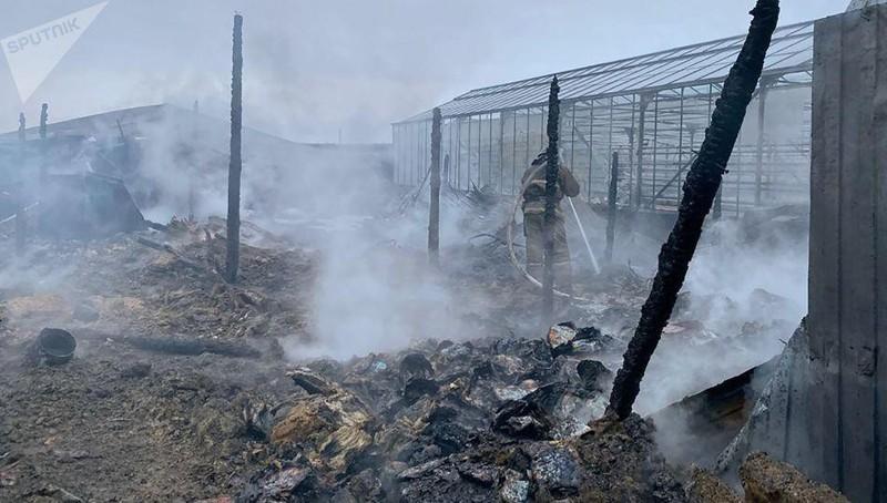 Xác định 1 nữ công dân Việt Nam bỏng nặng trong vụ cháy ở Nga