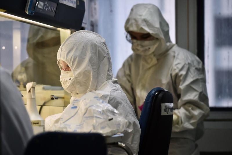 Các kỹ thuật viên đang xét nghiệm mẫu bệnh phẩm ở Thái Lan.
