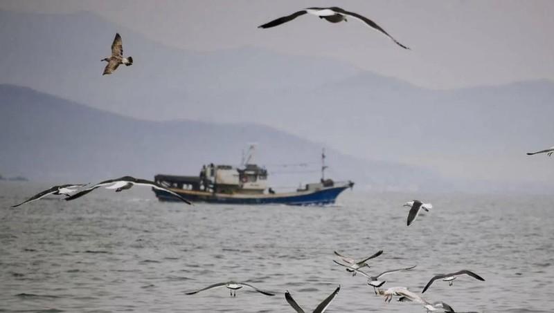 Nga thả 4 ngư dân Ukraine bị bắt ở biển Azov