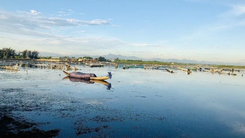 Vùng đất ngập nước Tam Giang - Cầu Hai.