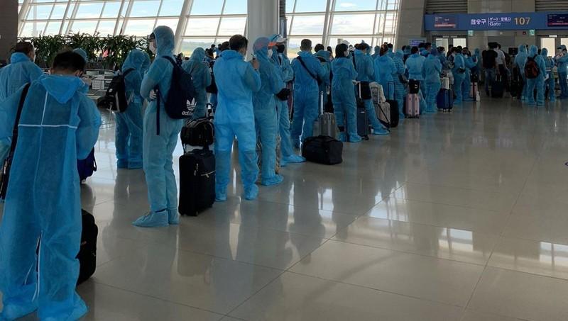 Đưa hơn 310 công dân Việt Nam từ Hàn Quốc về nước an toàn
