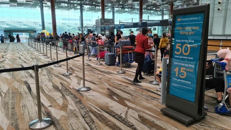 Thêm hơn 530 công dân Việt Nam được đưa từ Singapore, Đài Loan (Trung Quốc) về nước