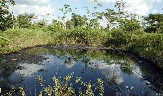 30.000 dân Ecuador vật vã trong cuộc chiến đòi bồi thường về chất thải độc hại