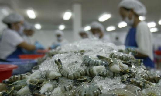 Nông sản bẩn đang tàn phá thương hiệu quốc gia