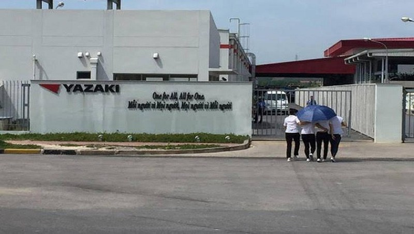 Công ty TNHH Yazaki Hải Phòng.